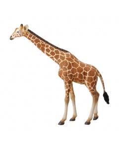 CollectA Animal Figurine Reticulated Giraffe